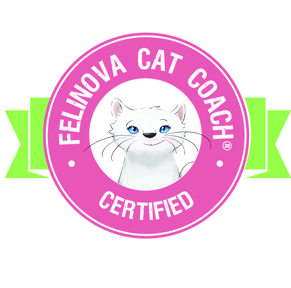 Felinova Cat Coaches